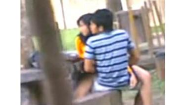 Desi Students Fucking in park Voyur Recorded